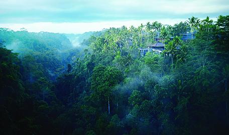 在峇里島, 遇見穿越山谷的一抹涼風